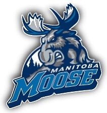 Manitoba Moose April 4 and 5 row 1 on the glass