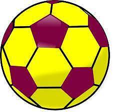 LOOKING FOR MIXED (5-A-SIDE SOCCER) TEAM AND INDIVIDUAL PLAYERS Perth Perth City Area Preview