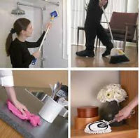 Looking to hire energetic and experienced house cleaner