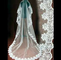 Brand new cathedral 3m lace veil