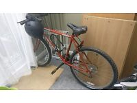 10 speed Mountain Bike for sale