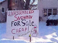 Snow Removal Residential and Commercial 780 903-5929