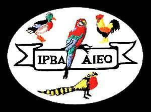 BIRD AUCTION