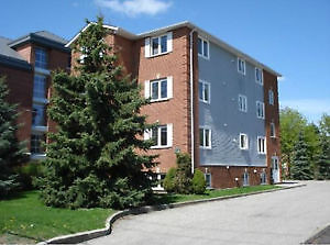 student apt with walking distance to UW to rent from Jan to Apri Kitchener / Waterloo Kitchener Area image 1