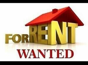 House or duplex wanted