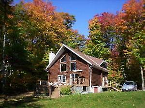 Waterfront LOG COTTAGE for sale Listed with Mike Nystedt at Exit
