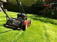 LAWN MOWING TRIMMING & GRASS CARE***