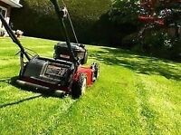 Grass cutting, snow blowing and more