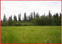 2-40 Acres zoned M2 Heavy Industrial raw land in Wandering River