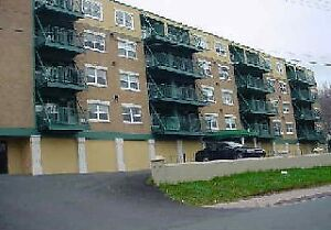 153 Patrick Street Unit 203 *FOR LEASE*