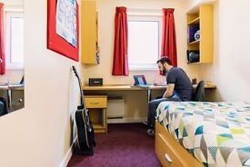 Single student room - Liberty Gardens Liverpool City Centre. En-suite. Shared kitchen. Deposit paid.