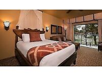 Disney World Florida 2019 Holiday in a Deluxe Studio Room at Animal Kingdom (Room only for 2weeks)