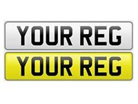 Number Plates & Show Plates