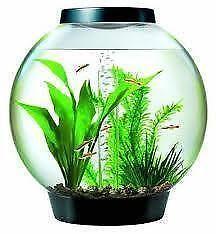 biorb 60 litre aquariums ebay. Black Bedroom Furniture Sets. Home Design Ideas