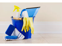 Professional cleaning and Ironing service