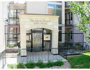 Downtown 2 Bedroom 2 Bathroom Condo for Rent available now