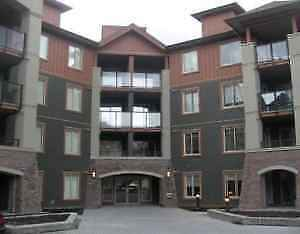 1 Bedroom Condo for Rent at Copperstone