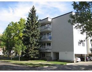 2 bedroom on Whyte ave!