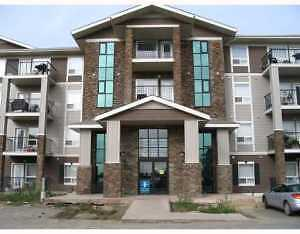 Condo For Rent - South Terwillegar - Park Place