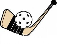 Hockey Cosom Dimanche Montréal Hiver 2016 - 5$/DIM