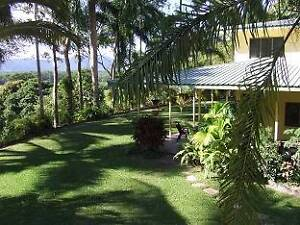 RELUCTANTLY SELLING their TROPICAL FAMILY HOME on 5 PRIVATE ACRES Wonga Cairns Surrounds Preview