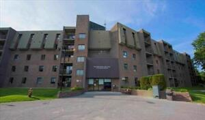 Great 2 bedroom apartment for rent Kingston Kingston Area image 10
