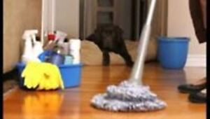 CLEANING OF CONDOS, APPARTEMENTS AND HOUSES