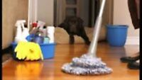DEEP AND BASIC CLEANING SERVICES