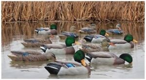 WTB duck and goose decoys