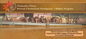 Select Horses For Sale