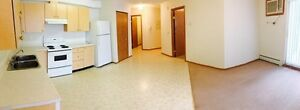Beautiful and Spacious 1 Bedroom on East Side - Senior Friendly!