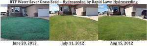Need Grass? Hydroseed your new LAWN for a fraction of SOD