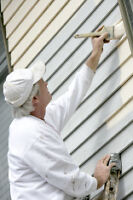 Painter    (For House and Commercial work)