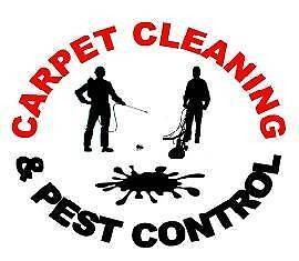 CARPET CLEANING AND PEST CONTROL Springfield Lakes Ipswich City Preview