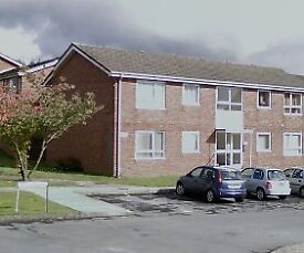 1 Bedroom 2 First Floor Flat available for rent in Francis Court, Rhos, Pontardawe (Over 55's)