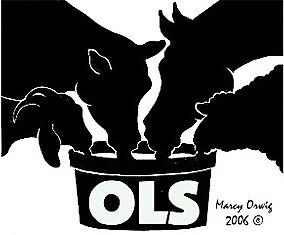 OLS Tubs - for cattle,horses,sheep,goats