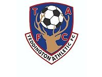 Youth U14 Football x2 Players Wanted - Teddington Athletic FC Cobras - Looking for players