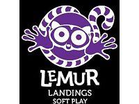 Lemur Landings passes x 5 (plus BOGOF)