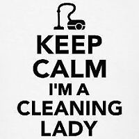 Cleaning Lady - In Home Cleaning