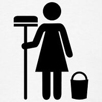 Cleaning lady ( west island)