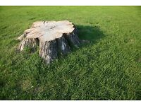 TREE STUMP REMOVAL BY PEETER-WOOD&TREE STUMP GRINDING SERVCICE