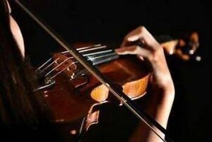 Affordable Violin Lessons Cashmere Pine Rivers Area Preview