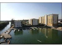 Modern One Bedroom Flat with Separate Kitchen ** Private Patio ** Underground Parking
