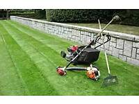 TEZGEL,GARDENING MAINTENANCE SERVICE we love to do gardening jop you hate...