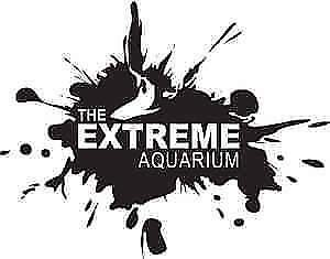 Awesome fish at The Extreme Aquarium here in Sarnia