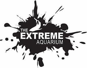 Cichlids at The Extreme Aquarium