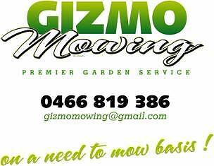 Gizmo Mowing City North Canberra Preview