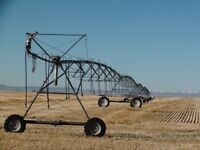 13 Quarters of Irrigated Land West of Barons Alberta