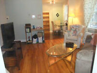 Fully Furnished South End Apartment