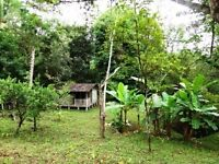 GORGEOUS 22 ACRE PROPERTY IN COSTA RICA